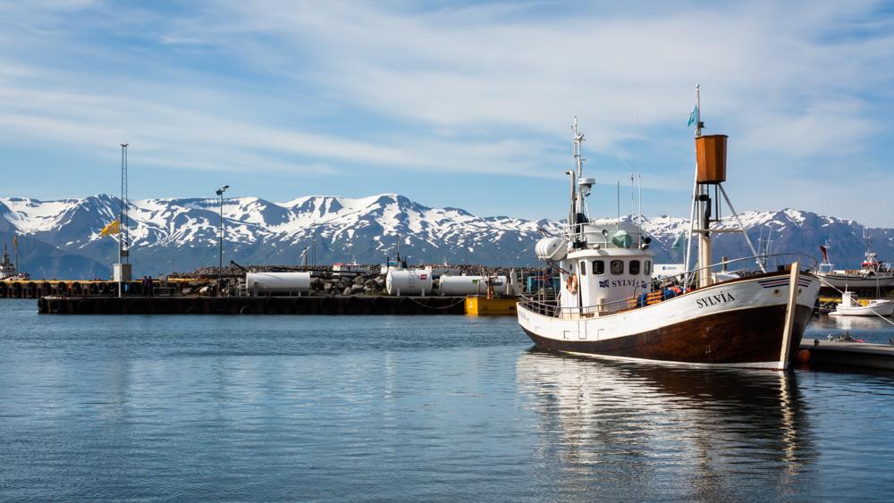 Husavik uostas - dar viena vietelė, kurioje knibžda turistų