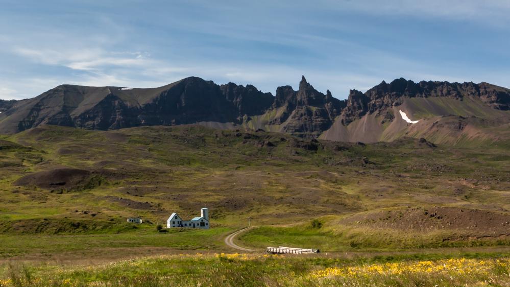 Islandijos vienkiemiai