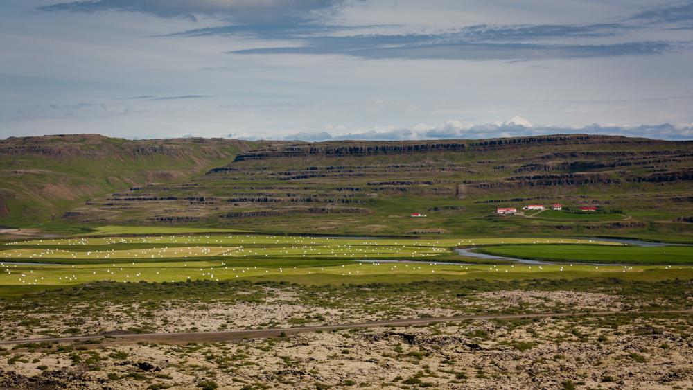 Dryžuotos Grábrók kraterių apylinkės