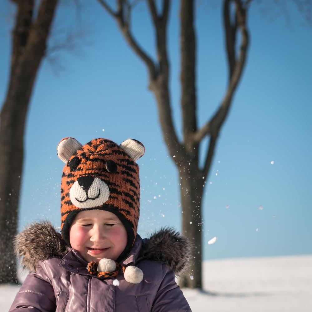 Tigrai mėgsta sniegą