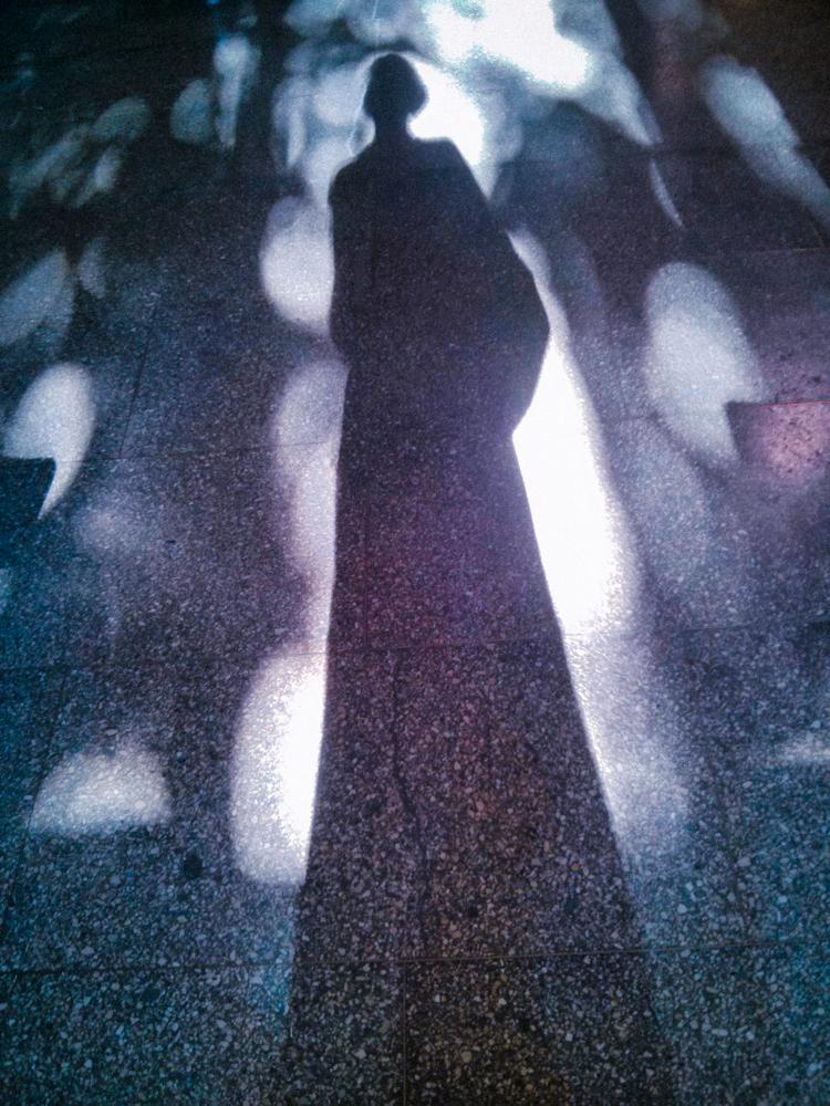 Autoportretas liepai. Sužinojau kaip gražiai vasarą saulė žaidžia mano darbovietės laiptinėje. Mobilografija.