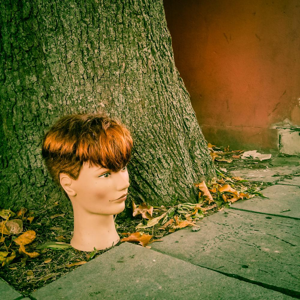 Dėl meilės, o gal dėl rudens?.. Radau šiandien pamestą galvą. Kai dabar galvoju, vertėjo pasiimti - dvi galvos geriau nei viena. Mobilografija.