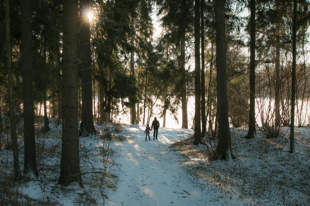Baltas Kalėdų rytas. Kurtuvėnų regioninis parkas.
