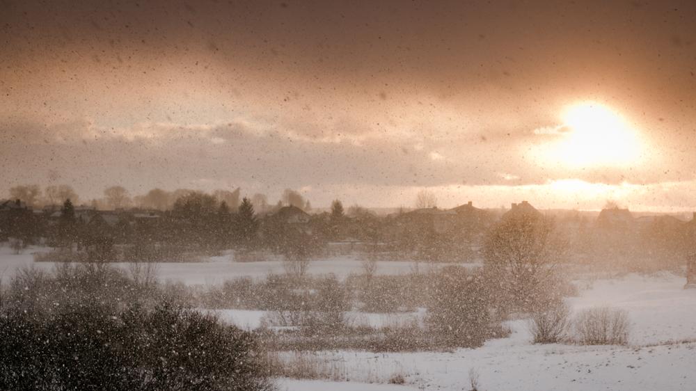 snigo