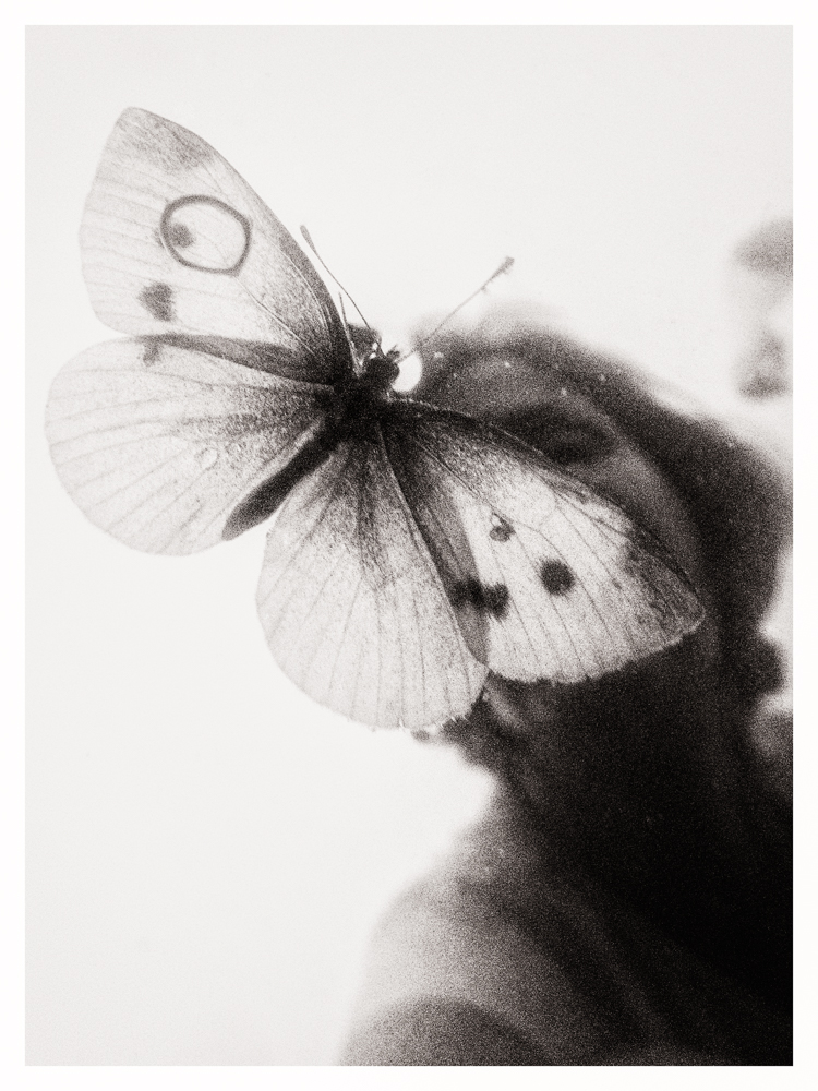 Portretas su drugeliu